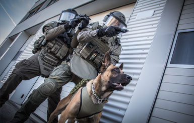 K9 special police unit with an attack dog.
